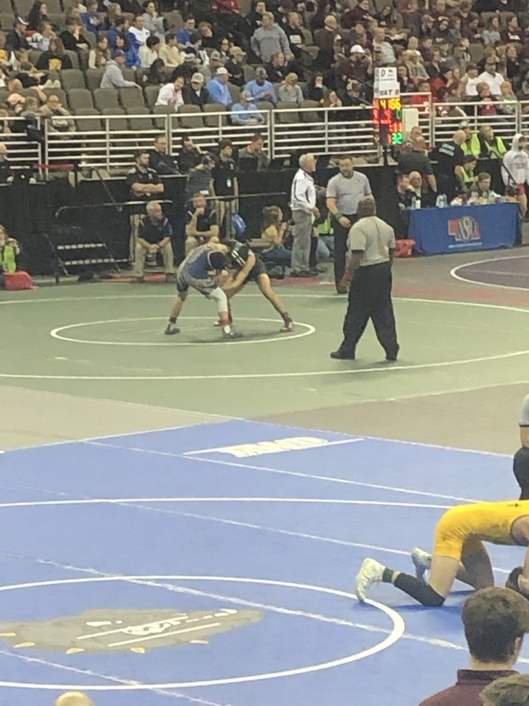 Lane Lieb battling at state.